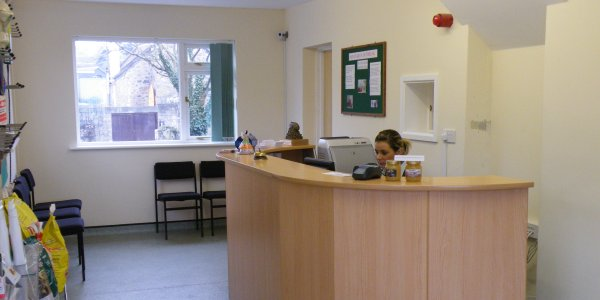Annie McWilliams in the 	  reception at St Ives Veterinary Surgery